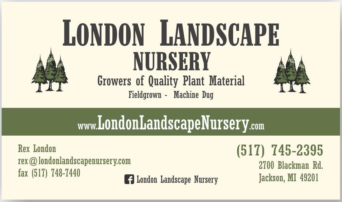 Graphic design print design brochures business cards marketing london landscape business card colourmoves Images