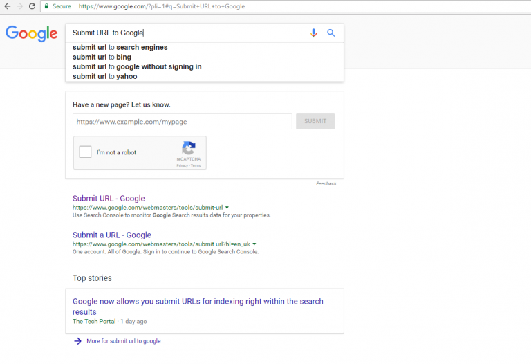 Google submit url in page