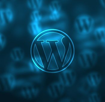 WordPress or Not? What's My Best Option?