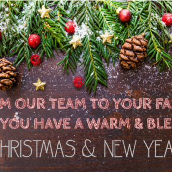 Have a Merry Christmas and Happy New Year!