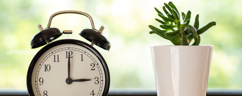 extra time on your hands_ 4 things you can do for you company when business is slow